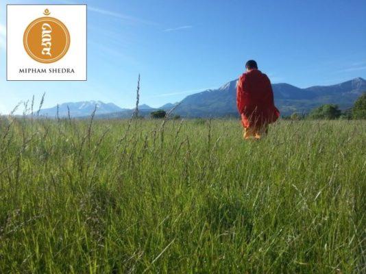 RinpocheField